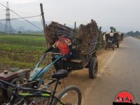 Northern Vietnam Cycling Tour – 10 Days